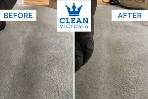Carpet Cleaning Newcastle.jpg