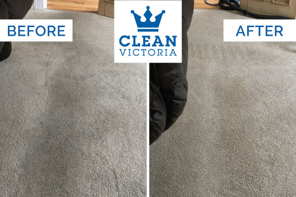 Carpet-Cleaning-Newcastle